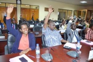 39 sénateurs burundais du nouveau sénat de la législature du quinquennat 2015-2020  ( Photo: ppbdi.com )