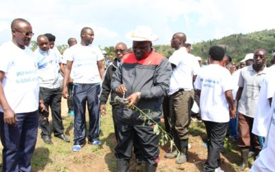 Burundi : TDC - Planter plus de 5800 arbres à Kayove, Rutana ( Photo : Assemblée Nationale 2016 )