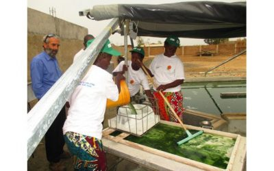 Burundi : L'expertise TWA -MUTWA sur l'introduction de la SPIRULINE en 2007 ( Photo : iwacu , antenna-france.org )