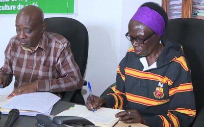 Burundi : Les Caféiculteurs fâchés suite à une INJUSTICE SOCIALE ( Photo : RTNB.BI 2018 )
