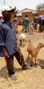 Burundi : Un éleveur - boucher, spécialisé chèvre - mouton ( Photo : ikiriho 2018 )
